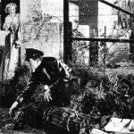 Crítica: EL MERODEADOR (1951) -Última Parte-