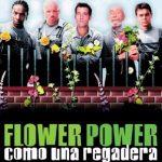 Crítica: FLOWER POWER (COMO UNA REGADERA) (2000)